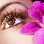 EYELASH BEAUTY CARE